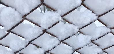 Снежни прелести