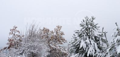 Зимна приказка в Шуменското плато