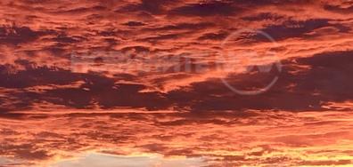 Огнените цветове на есенното утро