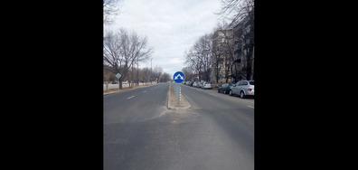 Забелязано в Пазарджик
