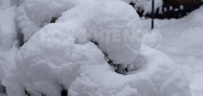 Всичко е покрито с дебели снежни шапки!