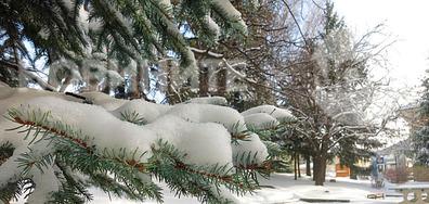 Зимно от Котел