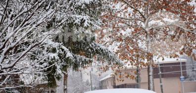 Красив, снежен Разград!