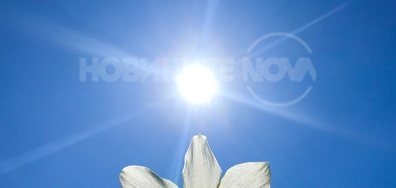 Под лъчите на пролетното слънце