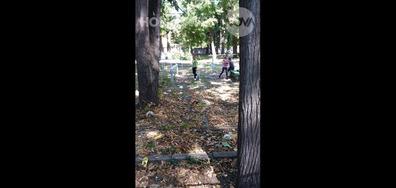 Сметище в училищен двор
