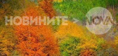 Есен в Севлиево