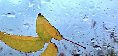 Есен зад дъждовното стъкло