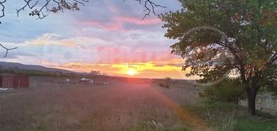 Залез в Брани поле