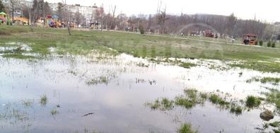 Новият увеселителен парк за жаби в София
