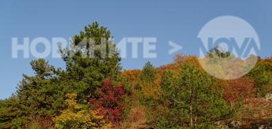 Есенни палитри от Шуменското плато