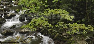 Водоснабдяването в Перник