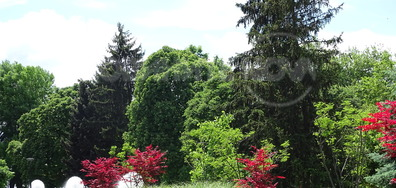 Пролетен оазис
