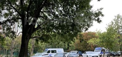Унищожаване на природа/Комфортно паркиране
