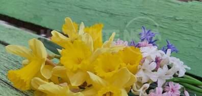 Пролетно утро😊