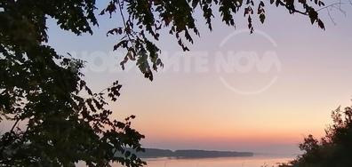 Дунав сутрин