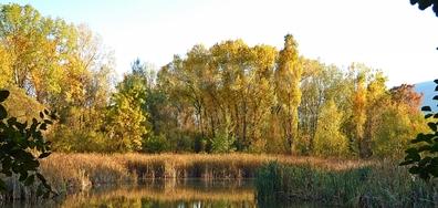 Есенно от Южния парк