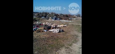 Сметище в село Граф Игнатиев