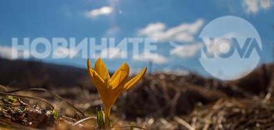 Ухае на пролет