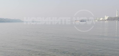 Слънчоглед, слънце и омара над Дунав