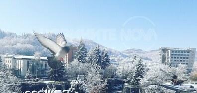 Зима в Златоград