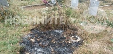 Как се почиства гробищния парк в Ихтиман
