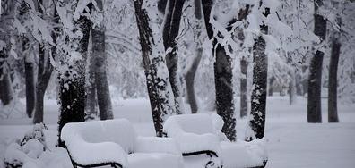 Честит Световен ден на снега!