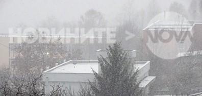 Вали сняг в Плевен