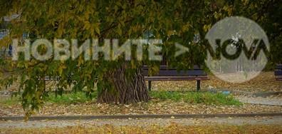 Есенна покривка