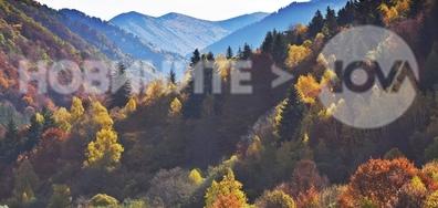 Есен в Рила планина