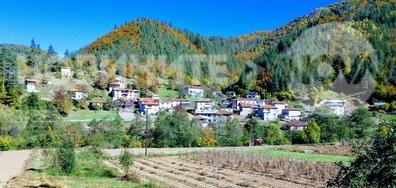 Село Липец
