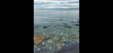 Бистро море край Варна, по време на пандемия