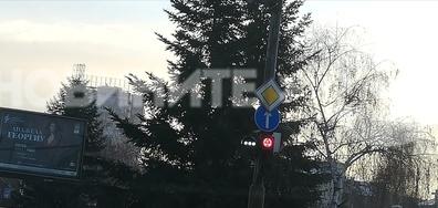 Светофар за трамвай