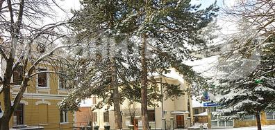 Зима в Котел