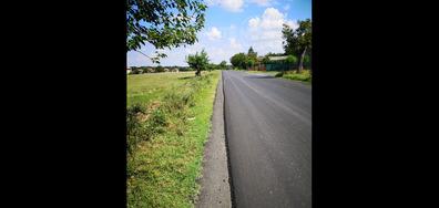 Пестене на асфалт