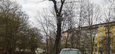 Паркиране в градинка