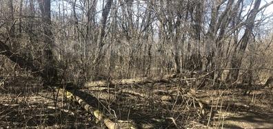 Ловен парк