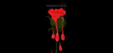 Сълзите на розата...