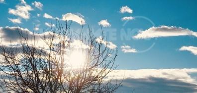 Декемврийско слънце