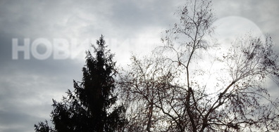 Зимно, безснежно!