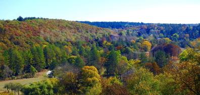 Приказна есен на Воден!