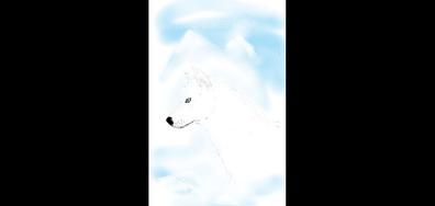 Красив облачен вълк