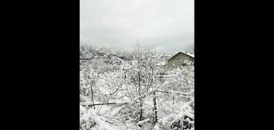 Зимен пейзаж в Белово