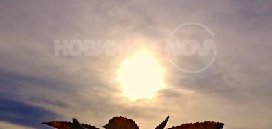 Ноемврийско слънце