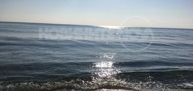Морето днес
