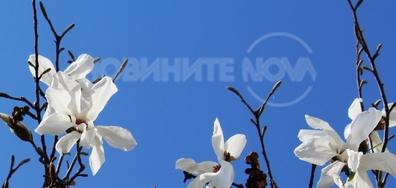 Пролетта е тук
