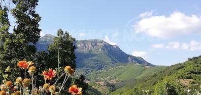 Поглед към Врачански Балкан