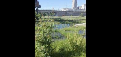Течащата канализация в Хасково