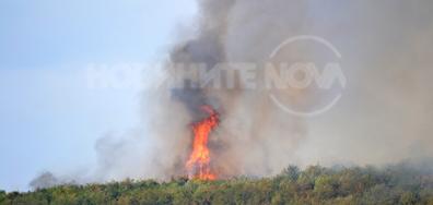 Пожар над Варна в с. Каменар