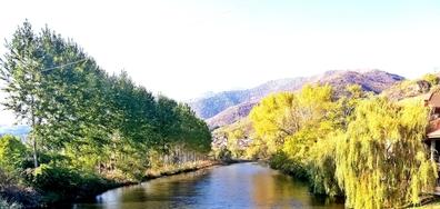 Есен край река Искър