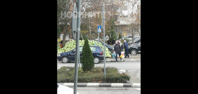 Шофьорски курсове в град Добрич